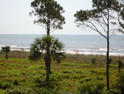 Sitting Inside the condo or rocking in the swivel chairs on the deck you enjoy the ocean view.